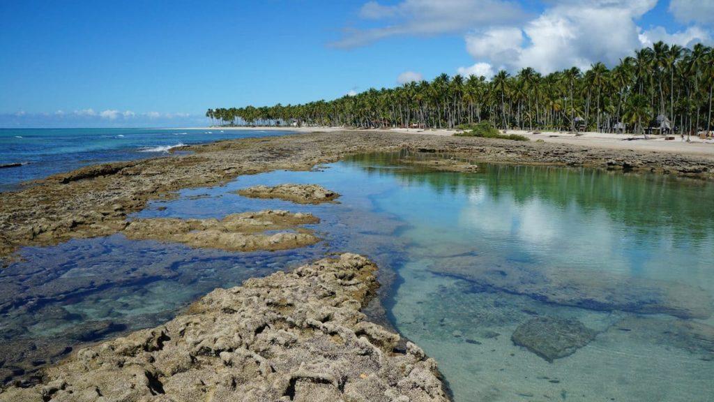 Cómo son las playas de Carneiros y de Maragogi