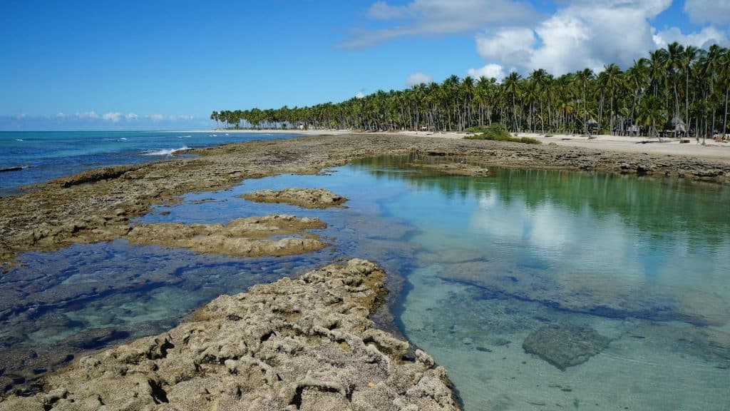 Natural Pools in Carneiros Beach Brazil