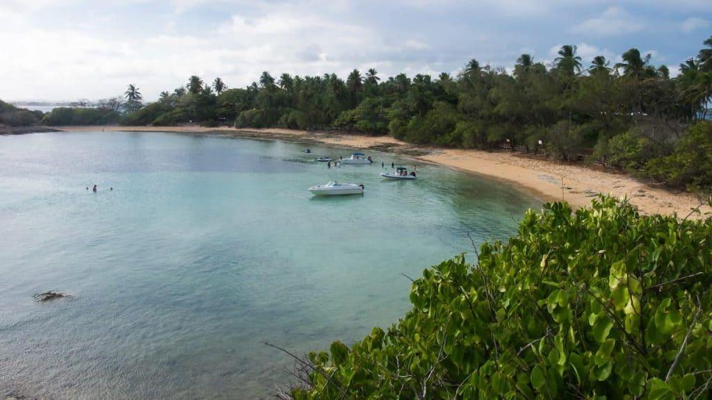Paseo a la Isla de Santo Aleixo