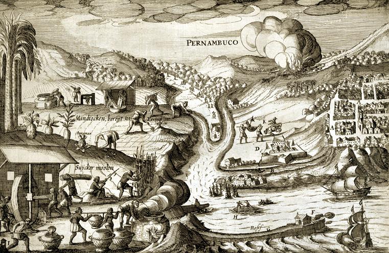 A história de Porto de Galinhas: Colonização de Pernambuco