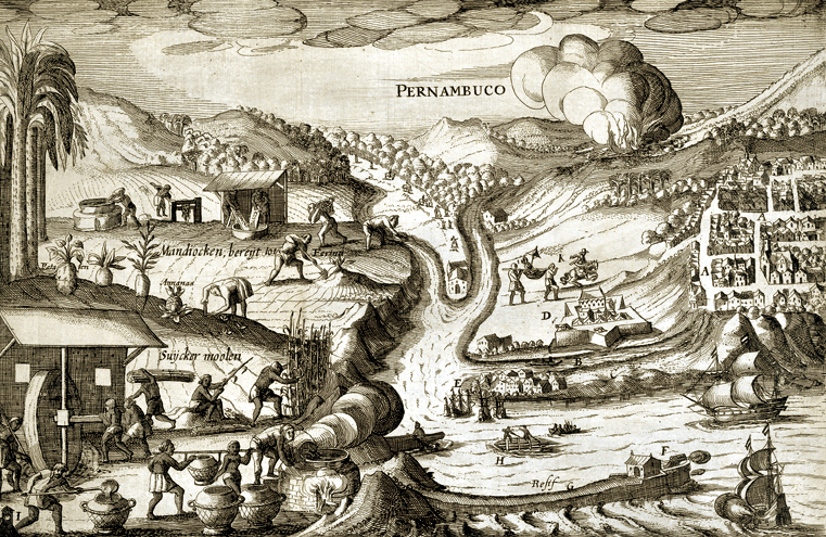 Porto de Galinhas history: Colonization of Pernambuco