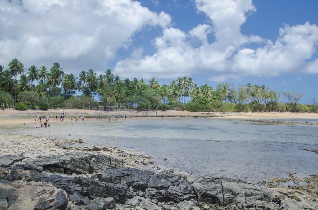 Azul-claro das águas da baía Ilha de Santo Aleixo Pernambuco