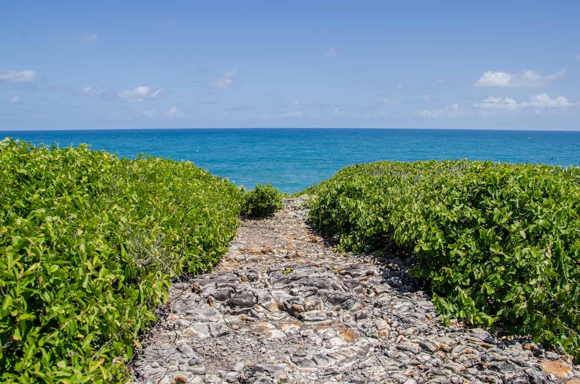 Cómo llegar a la Isla de Santo Aleixo en Pernambuco
