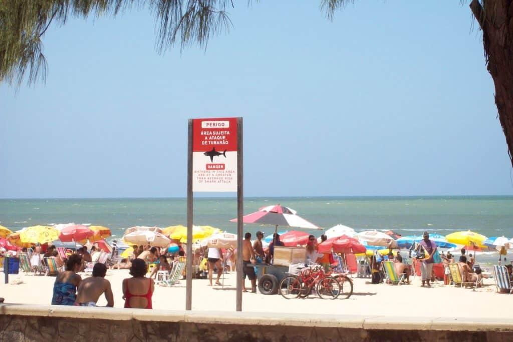 Praia de Boa Viagem: Placa de tubarão em Recife