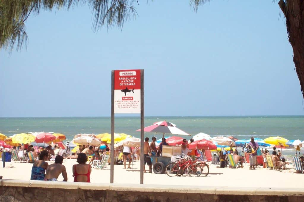 Playa Boa Viagem: Cartel de tiburones en Recife Pernambuco